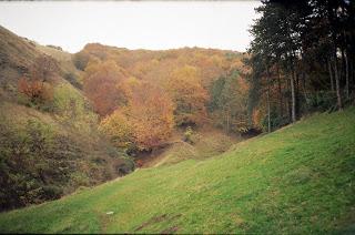 , Despre anglo saxoni, startachim blog