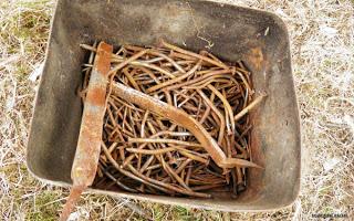 , Ieri am scos cuie din lemne vechi, startachim blog, startachim blog