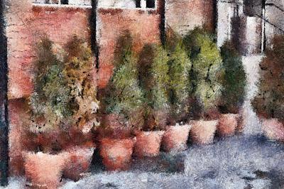 , Pomi ornamentali prelucrați, startachim blog, startachim blog