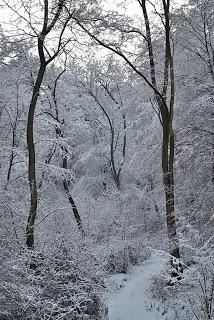 iarna-la-Cugir