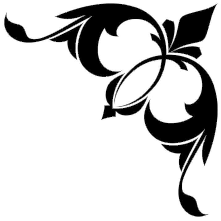 , Colț transparent, startachim blog