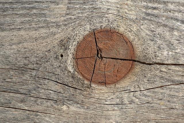 node wood crack