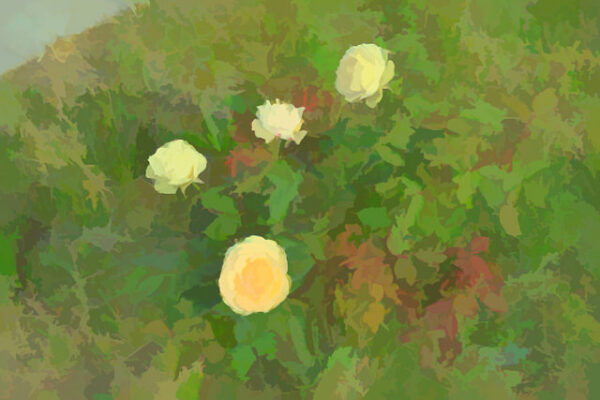 painting with yellow roses