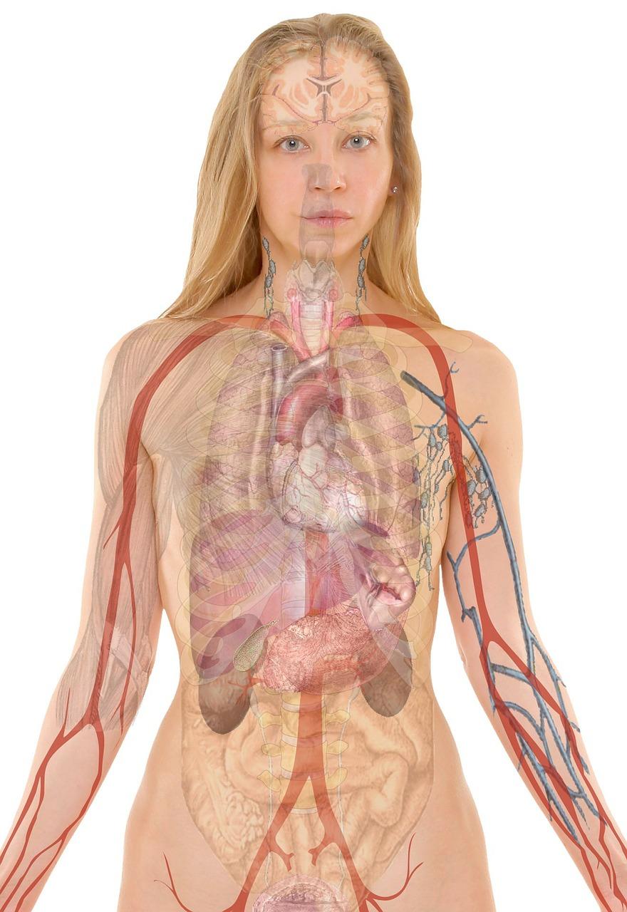 , Drug Detoxification Medical Programs, startachim blog