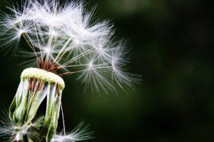 severe, Common Allergy Symptoms, startachim blog, startachim blog